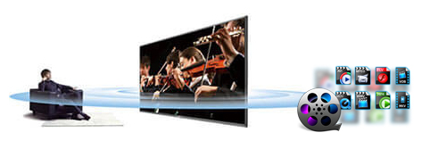 Hisense TV Supported Video/Audio Formats and Video Playback