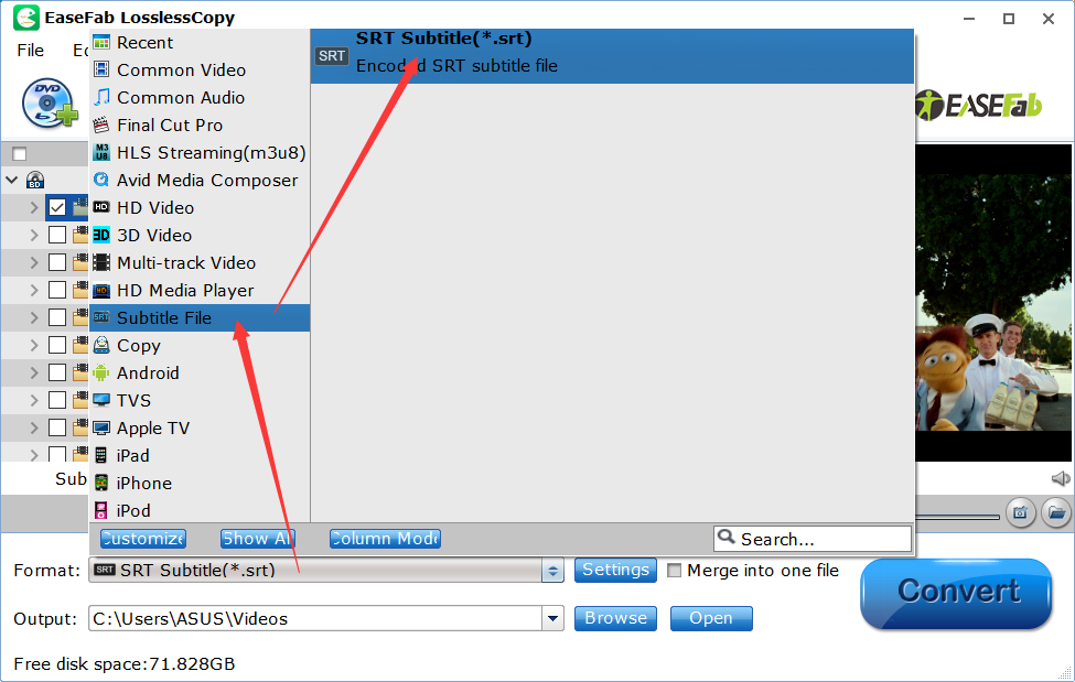 How to extract subtitles from a Blu-ray to SRT file quickly