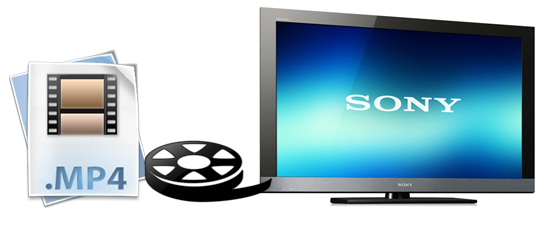 Best Workaround: How to Solve Sony TV Won't Play MP4 files